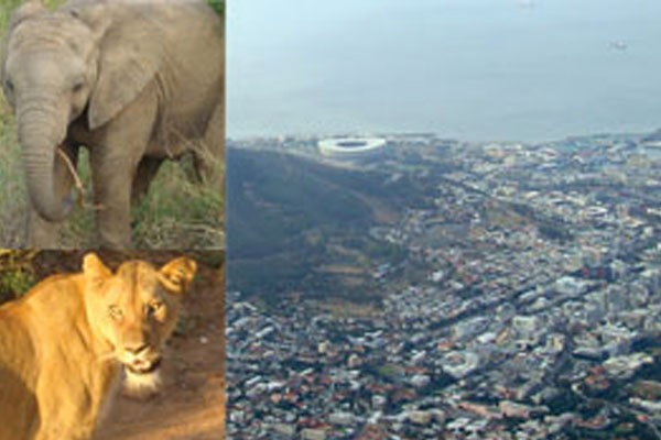 Entre as feras da África